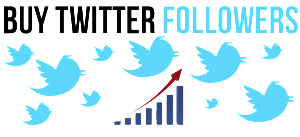 buy-twitter-followers
