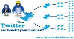 Buy Indian Twitter Followers